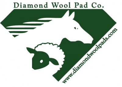 Diamond Wool Big Logo Hnt NAME